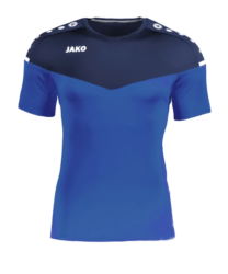 Union Thalheim Trainingshirt