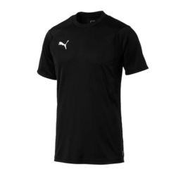 Union Eberstalzell KM Trainingsshirt