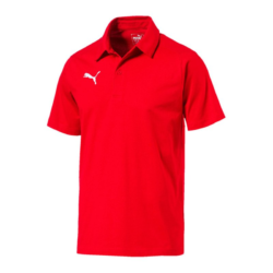 SV Pichl Trainer Polo