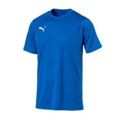 Union Thalheim Trainingsshirt