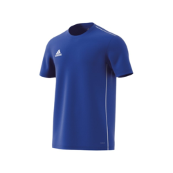 Union Edelweiß Trainingsshirt
